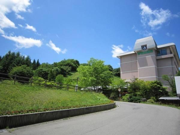 Hotel Shin Appi Onsen Seiryukaku