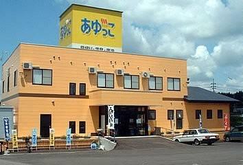 Hotel (RYOKAN) Anigawa Ayukko Onsen