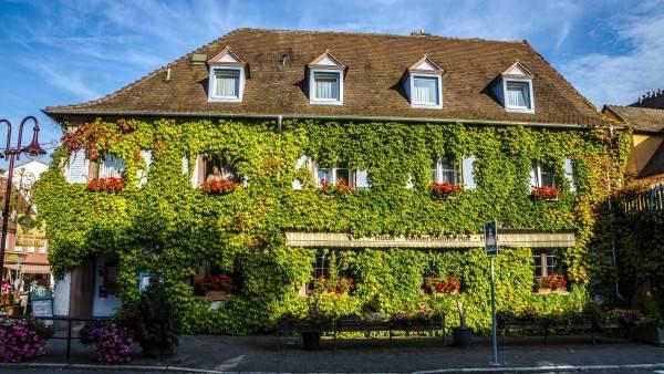 Hotel Kaiserstühler Hof