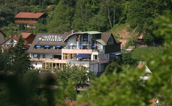 Hotel Am Hirschhorn Landhaus
