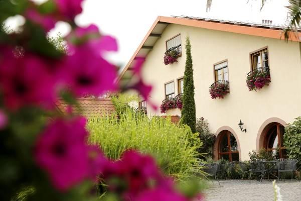 Hotel Villa Hochdörffer Weingut & Gästehaus