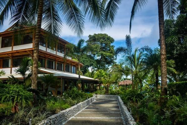 Hotel Blue Osa Yoga Retreat Spa 3 Hrs Star Hotel In Puerto Jimenez Provincia De Puntarenas