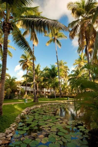 Hotel Meliá Caribe Tropical
